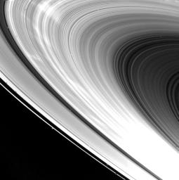 PIA02269: Saturn's Ring System