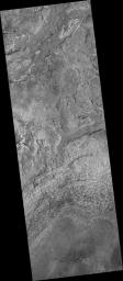 PIA09673: Dark-Toned Ridges in Meridiani