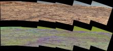 PIA22065: Mastcam Special Filters Help Locate Variations Ahead